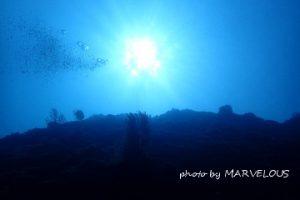 水中からの太陽